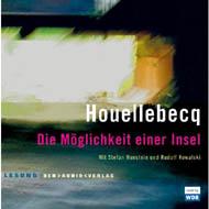 houellebecq_insel_190.jpg